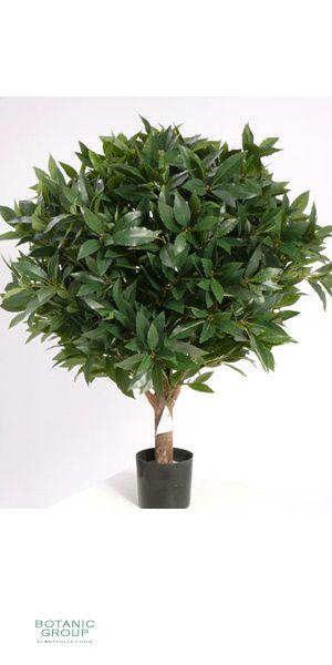 Artificial plant - laurel plant in pot
