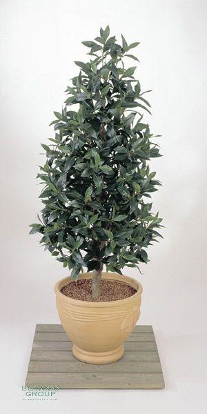 Artificial plant - Laurus nobilis pyramidalis