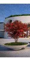 Concrete planter poly Bowl XXL