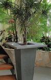 Concrete planter CONCEPT with edge