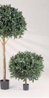 Artificial plant - Laurus nobilis ball